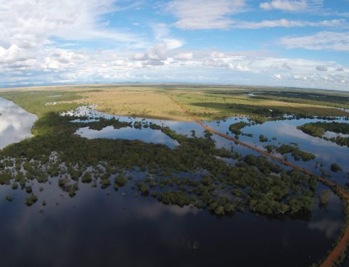 The ADAPTA BLUES preparatory actions are in progress