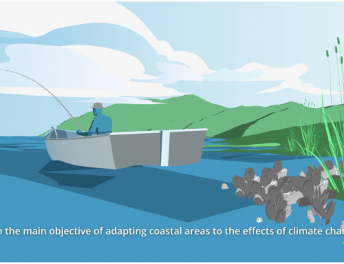 The project makes public the explanatory video